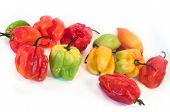 Exotic Peppers
