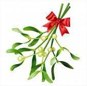Mistletoe on white. Vector eps 10.
