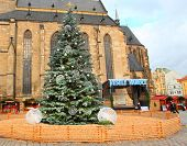 PILSEN CZECH REPUBLIC - DECEMBER 8, 2014: Christmas tree on the Christmas market in the city center. It is Czech's tradition with a very long history dating back to 1296.