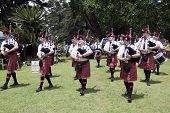 Caledonian Pipe Band Marching And Performing Outdoors