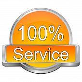 100% Service button