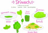 cartoon hand drawn spinach food set