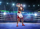 Professionl boxer is standing on the ring
