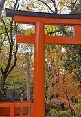 stock photo of shogun  - Shimogamo - JPG