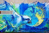Street art Montreal bird