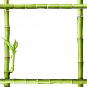 bamboo  frame isolated on white