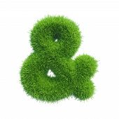 image of ampersand  - ampersand of green fresh grass isolated on a white background - JPG