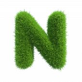 Letter of green fresh grass isolated on a white background.