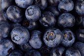 Macro Closeup View Group Fresh Blueberries Background