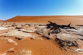 Sossusvlei Beautiful Landscape Of Death Valley