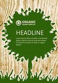 Vector Nature Organic Template For Brochure, Flyer, Magazine Cover Or Poster. Eco Wooden Texture Bac