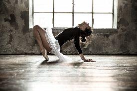 picture of  dancer  - Young ballet dancer  - JPG