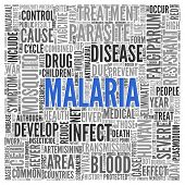 picture of malaria parasite  - Close up Blue MALARIA Text at the Center of Word Tag Cloud on White Background - JPG