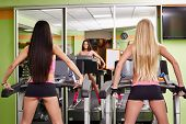 image of treadmill  - Rear view of athletic girls exercising on treadmills - JPG