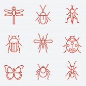 picture of insect  - Insect icon set - JPG