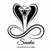 picture of cobra  - Snake logo - JPG