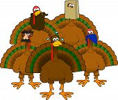stock photo of wacky  - cartoon graphic depicting a group of disguised turkeys - JPG