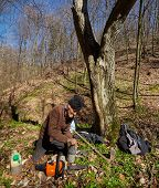 stock photo of man chainsaw  - Senior woodcutter doing maintenance work for his chainsaw - JPG