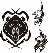 Brauner Bär Eisbär und Wolf.