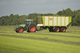 image of tractor-trailer  - Agriculture transport of cut grass with green tractor and grass trailer - JPG