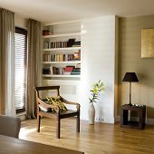 pic of guest-house  - bookcase - JPG