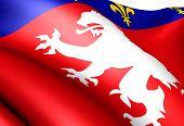 Flag Of Lyonnais