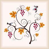 Grape vine and bird.