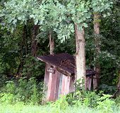 Ladies Outhouse In The Woods