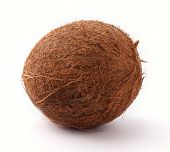coconut isolated on white