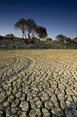 A dry lake in Istanbul / Turkey with a deep blue sky. 8.2 MP RAW file also available. Suitable for g