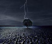 gebrochene Land und Blitzeinschläge auf dem einzigen Baum