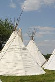 picture of tipi  - A group of tipis  - JPG