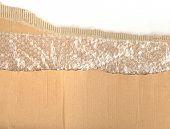 Corrugated Cardboard 03