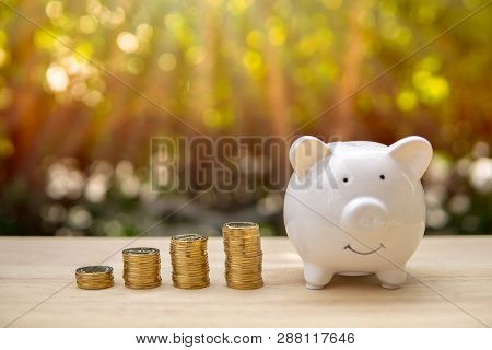 poster of Piggy Bank And Money Coin Bars On A Wooden Table In Sunlight Background. - Saving Money Concept, Sav