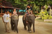 KO CHANG, THAILAND - DECEMBER 22: Elephant carries unrecognizable children on Dec 22, 2011 on Ko Chang, Thailand. Nowadays development of the tourism industry found a new use for elephants in Thailand