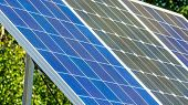8977_the_blue_solar_panel_with_a_tree_at_the_back.jpg poster
