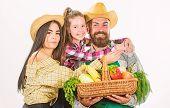 Family Farmers Hug Hold Basket Fall Harvest. Family Gardeners Basket Harvest Isolated White Backgrou poster