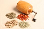 Grinder With Spices