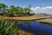 Glades - Florida