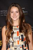 LOS ANGELES - JAN 14:  Shailene Woodley arrives at  the BAFTA Award Season Tea Party 2012 at Four Se