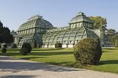 stock photo of schoenbrunn  - The Palm House is part of the plant from Schoenbrunn Castle - JPG