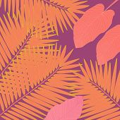 Trendy Hand Drawn Pattern With Colorful Banana Leaf Drawn Outline On White Background. Tropical Leav poster