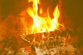 Burning Firewood In The Fireplace Close-up. Close-up With Burning Logs And Vivid Burning Orange And  poster