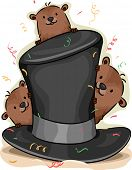 foto of groundhog day  - Illustration of Groundhogs Peeking From Behind a Hat - JPG