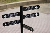 Path Of Roses, Garden Of Roses - Sign Post In English And Japanese