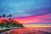 Vibrant sunset over tropical beach and palm trees in Dominican republic poster