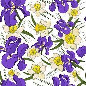 Seamless Vector  Pattern Of  Iris, Narcissus Flowers. Endless Botany Texture For Fabrics, Textile Pr poster