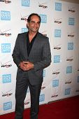 LOS ANGELES - OCT 26:  Navid Negahban arrives at the 41st Annual Peace Over Violence Humanitarian Aw