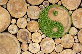 stock photo of ying-yang  - Stacked Logs Background with ying yang symbol - JPG