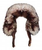picture of arctic fox  - Fur cap from arctic fox skin - JPG